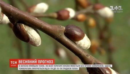 Синоптики прогнозують в Україні суху та сонячну погоду