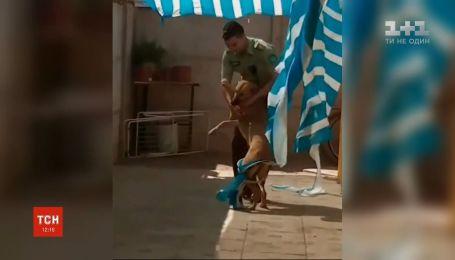 В Чили полицейский перелез через забор чужого двора, чтобы спасти пса