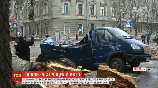 Водій не може знайти власників тополі, яка розтрощила його бус у Миколаєві