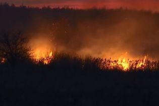 Під Києвом палають поля, вогонь підходить до житлових будинків
