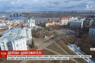Легендарные деревья Киева: в столице сделали интерактивную карту живых памятников
