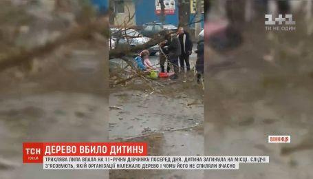 В Виннице из-за падения дерева погибла 11-летняя девочка