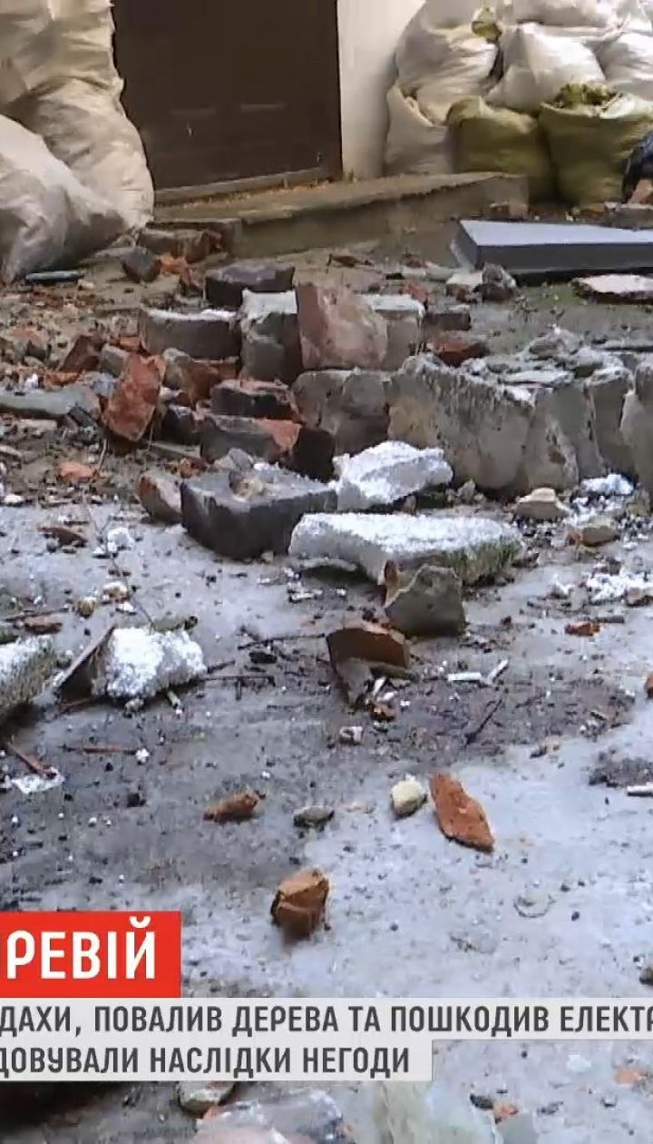 Сорванные крыши и поваленные деревья: Львовскую область накрыл шквальный ветер