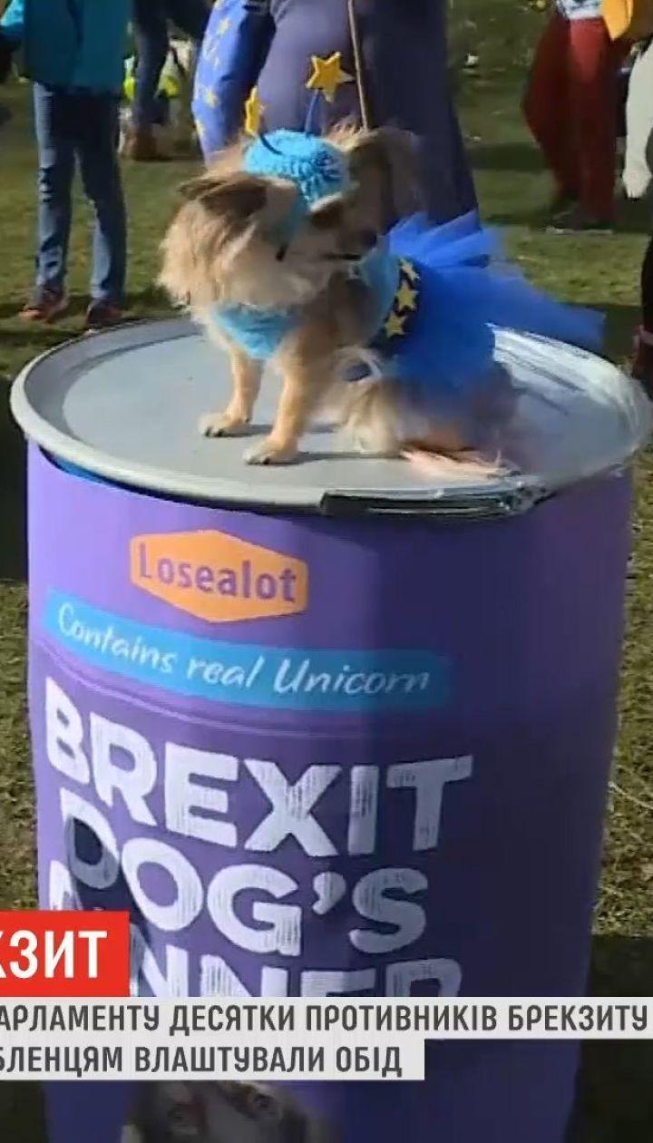 В Великобритании десятки противников Brexit устроили акцию с собаками