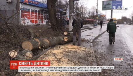 На 11-летнюю девочку в Виннице упало дерево, ребенок погиб