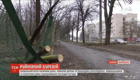 Буревій на Львівщині пошкодив будівлі та лінії електропередач