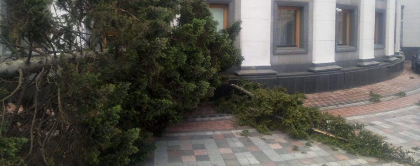 На Верховную Раду завалилась высокая ель и ободрала фасад здания