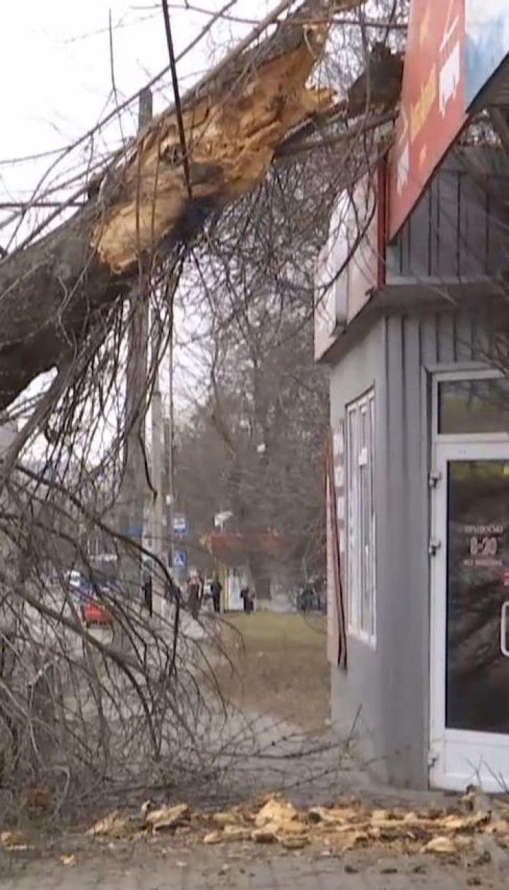 В Винницкой области ураган унес жизни двух человек