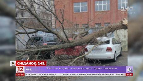 Десятки поранених і троє загиблих: ураганний вітер встиг накоїти лиха в Україні