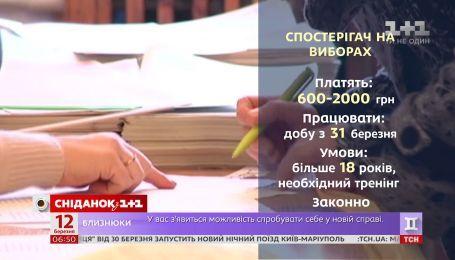 Палатки или соцопросы: как заработать во время предвыборной агитации в Украине