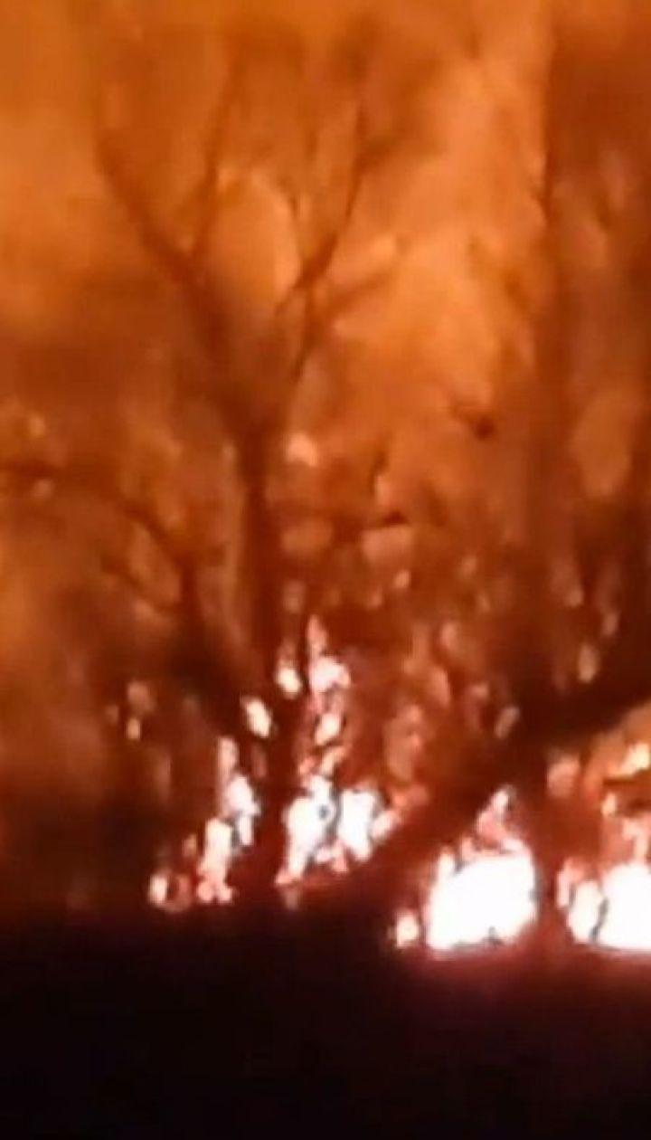 В Одесской области горели Днестровские плавни