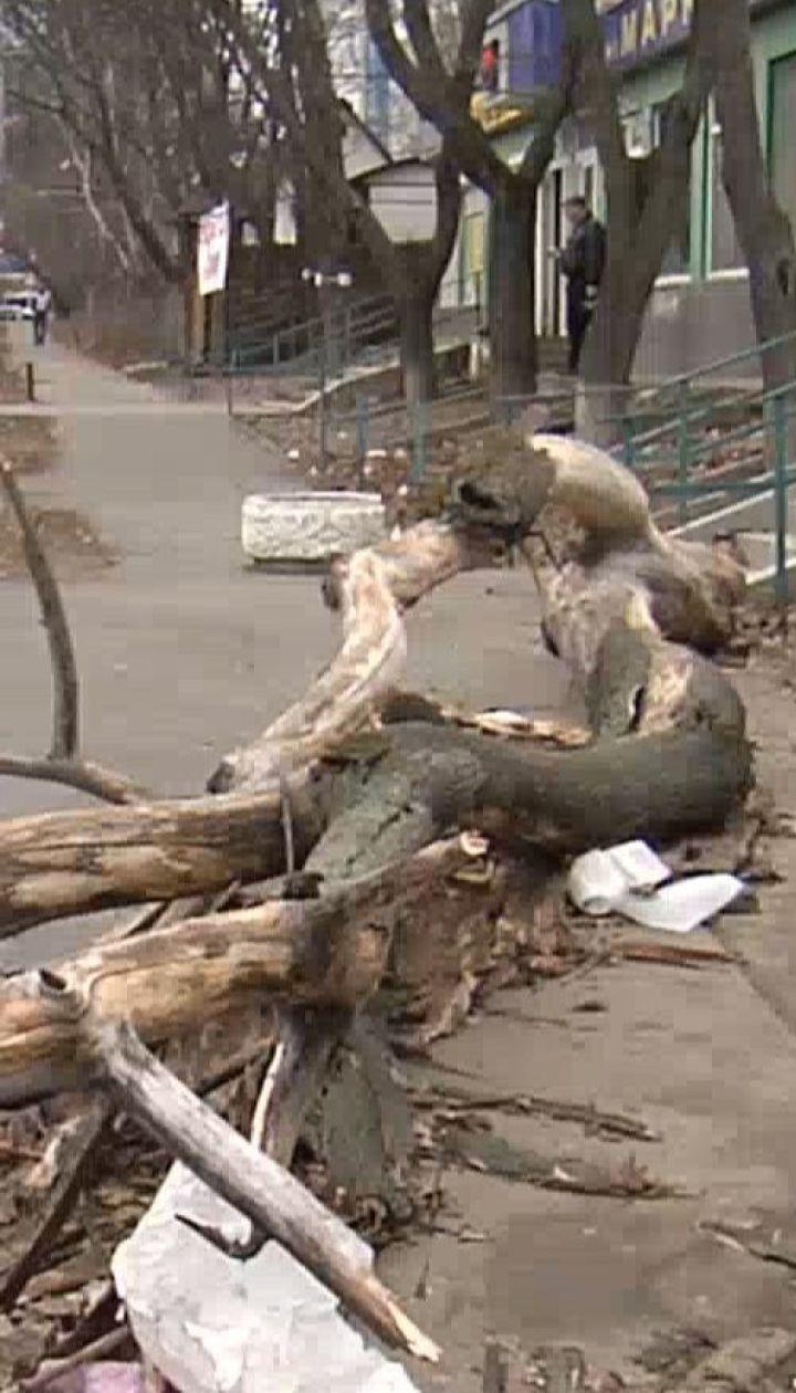 Синоптики продлили на сутки штормовое предупреждение из-за сильного ветра