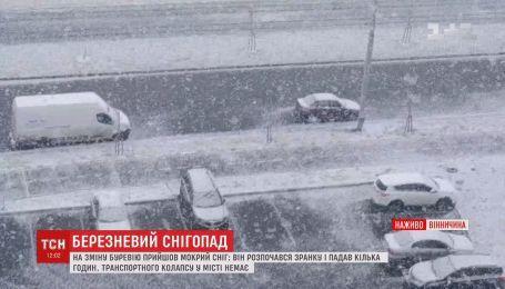 Березневий сніг випав у Вінниці