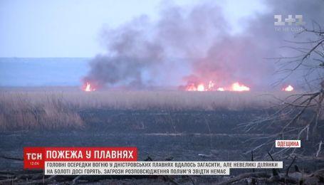 Полностью преодолеть огонь в Днепровских плавнях пока не удалось