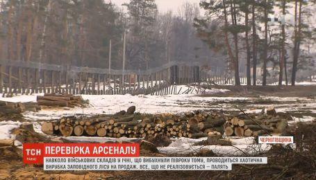 Вокруг военных складов в Ичне проводится хаотическая вырубка леса на продажу