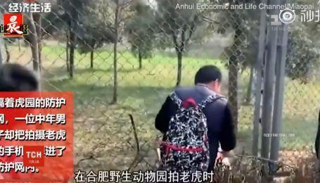 Посетитель зоопарка пытался самостоятельно достать мобильный из клетки тигра