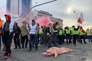 Туша свині, розкидані яблука та спалені шини: у Польщі протестують фермери