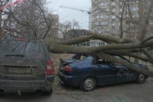 Ураган в Украине. Кто заплатит за поврежденное непогодой авто
