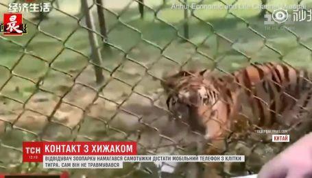 Посетитель зоопарка разозлил тигра, пытаясь достать мобильный с его клетки