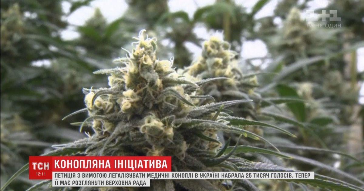Петиция марихуана конопля можга