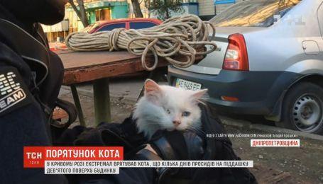 На Днепропетровщине мужчина спас кота, который несколько дней просидел на навесе дома