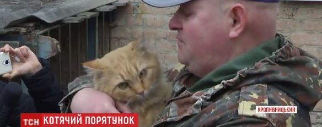 В Кропивницком почти две недели спасали кота, застрявшего в вентиляции