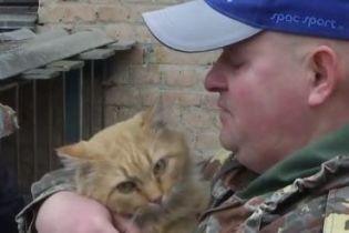 У Кропивницькому майже два тижні рятували кота, який застряг у вентиляції