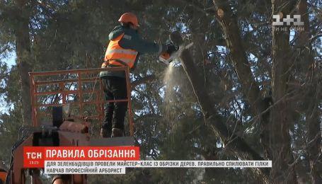 У столиці для комунальників провели майстер-клас із обрізки дерев