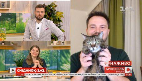 Григорий Жигалов рассказал, как чувствует себя кот Честер после перелета