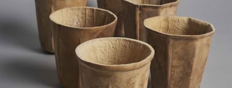 """У США дизайнери """"виростили"""" унікальні біорозкладні чашки для кави зі звичайних кабачків"""