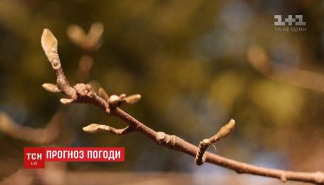 Настоящая весна пришла в Украину, но всего на день