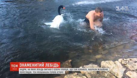 Херсонщина прославилась на весь мир благодаря лебедю, который выгнал парня из озера