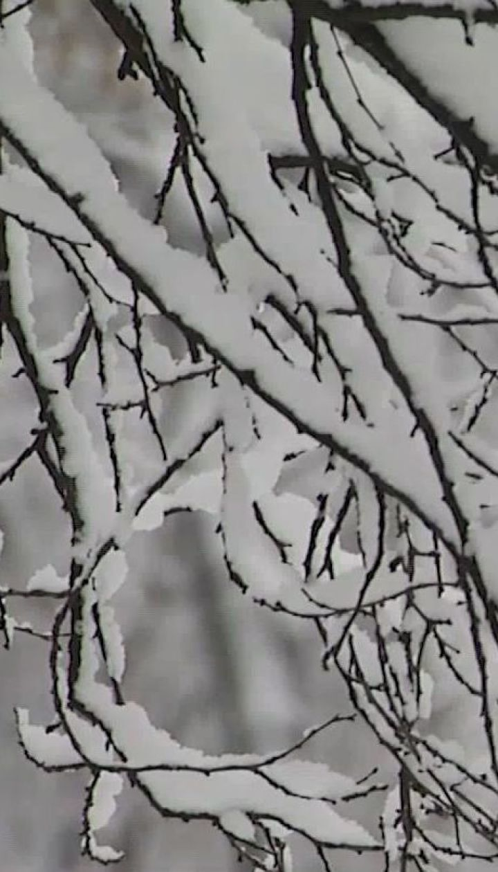 В Україну повертається прохолодна погода