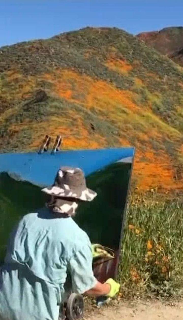 В Калифорнии расцвело рекордное количество маков