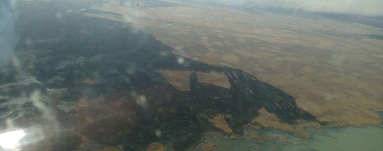 Масштабну пожежу у лісовому масиві на Одещині загасили: літак ДСНС скинув 24 тонни води
