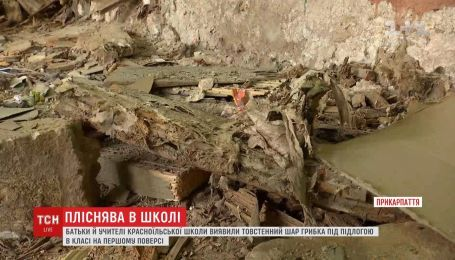 Полтысячи учеников села Красноилья остались без школы