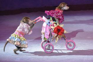 У 2020 році з державних цирків зникнуть вистави з тваринами - Бородянський