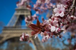 SkyUp открыла продажу билетов во Францию из Киева и Харькова