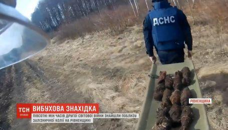 Полсотни мин нашли возле железнодорожного пути на Ровенщине