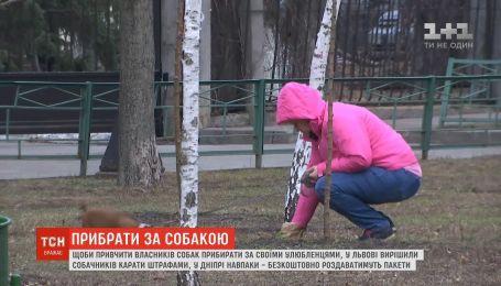 Активисты пытаются приучить украинцев убирать за своими любимцами