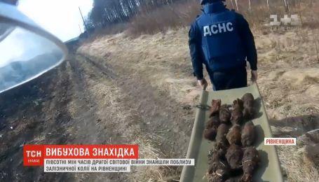 Сапери знешкодили десятки мін, знайдених біля залізничної колії на Рівненщині
