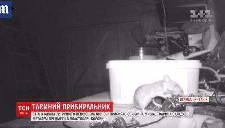 Стіл у гаражі британського пенсіонера щоночі прибирає звичайна миша