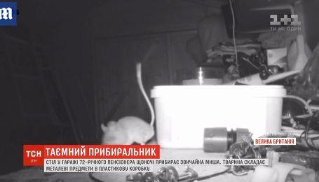 Таємний прибиральник: миша щоночі наводить порядок у гаражі 72-річного пенсіонера