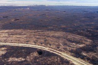 На Одещині вигоріли тисячі гектарів заповідного степу, екологи підозрюють підпал для захоплення землі
