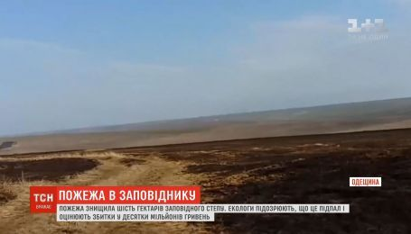 Шість тисяч гектарів заповідного степу вигоріло на Одещині