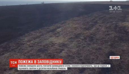 Пожар уничтожил шесть тысяч гектаров заповедной степи в Одесской области