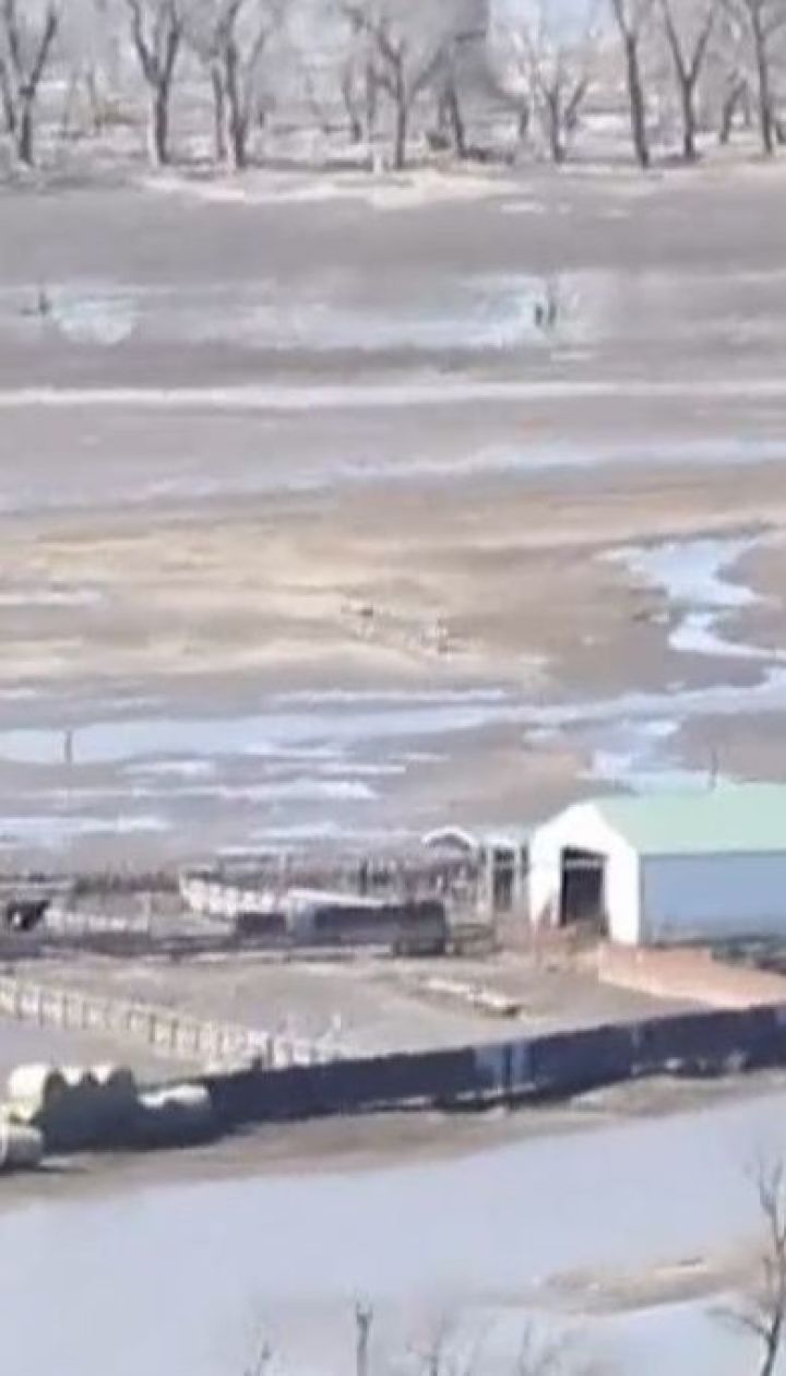 У штаті Небраска надзвичайники з гелікоптерів підгодовують тварин на затоплених фермах