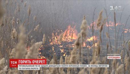 Вследствие пожаров в херсонских плавнях выгорела площадь в 70 гектаров