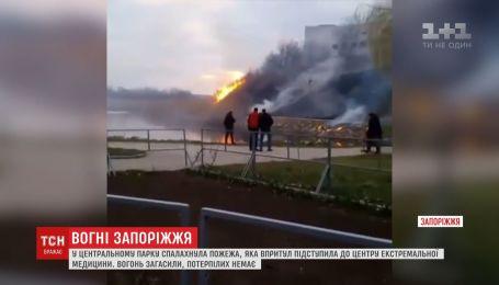 У запорізькому парку стрімко спалахнула пожежа