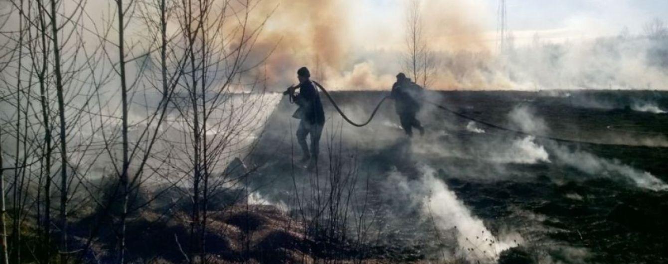 В крупнейшем парке Запорожья произошел масштабный пожар